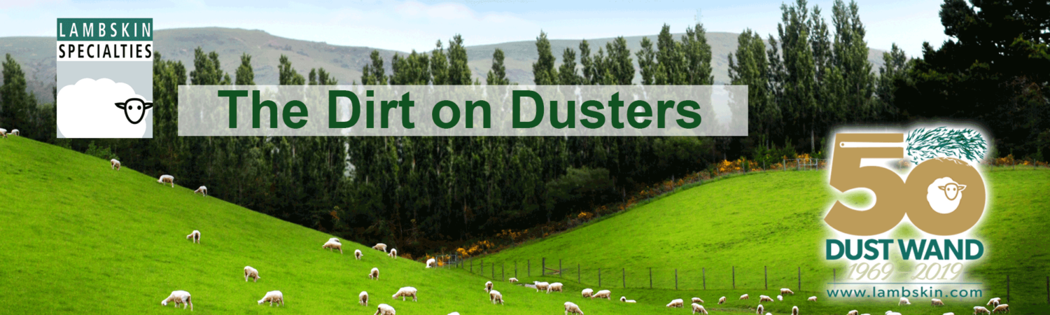 The Dirt on Dusters